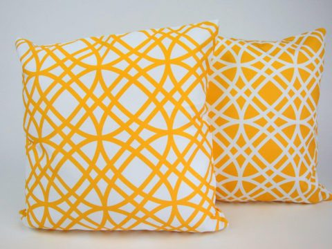 Pair of Seymour Cushions