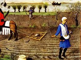 Mediaeval-arable-farming-3