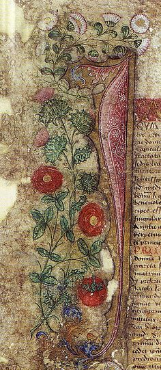 A-detail-from-the-Treaty-of-Perpetual-Peace-showing-James-thistle-and-Margarets-red-rose