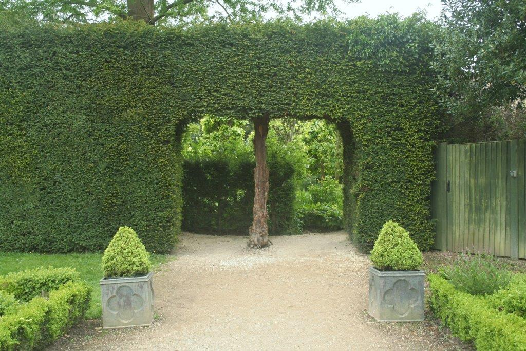 Yew-hedge-with-entrance-cut-into-it-Reduced